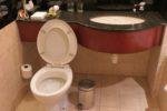 学校の衛生環境~トイレと手洗い環境の成り立ち~