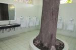 辺境のトイレ紀行|第3回近代と伝統が織りなす国・ベトナム